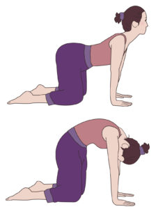 身体の前面と後面の筋肉を伸ばすポーズ